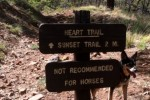Great Flagstaff area Hikes