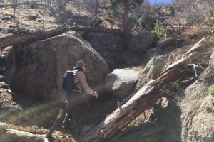 Another go at the  Mt. Elden Gully