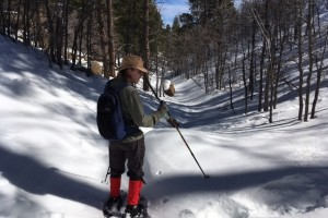 Snowshoeing around Mt. Elden