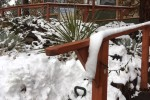 Another Good Storm for Flagstaff