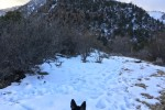 Winter Hiking around Mt. Elden