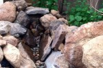 The Elden Trails B&B Water Feature