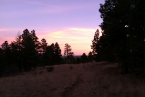 Fall Sunsets in Flagstaff